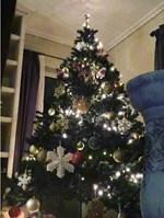 Η παρουσιάστρια του Alpha στόλισε το Χριστουγεννιάτικο δέντρο του σπιτιού της παρέα με τον αγαπημένο της
